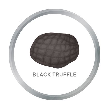 expensive food: Black truffles icon in cartoon style isolated on white background. Mushroom symbol stock vector illustration.