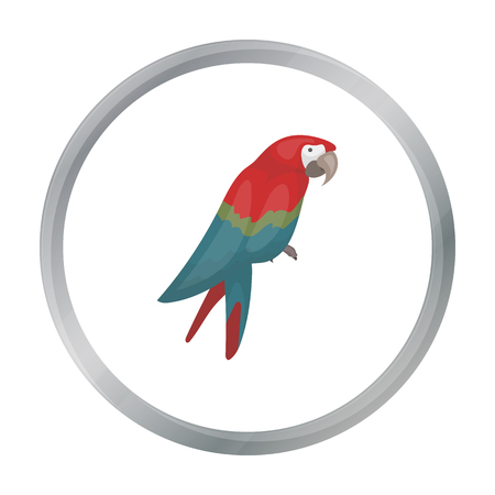 pampered: Pirates parrot icon in cartoon style isolated on white background. Pirates symbol stock vector illustration.