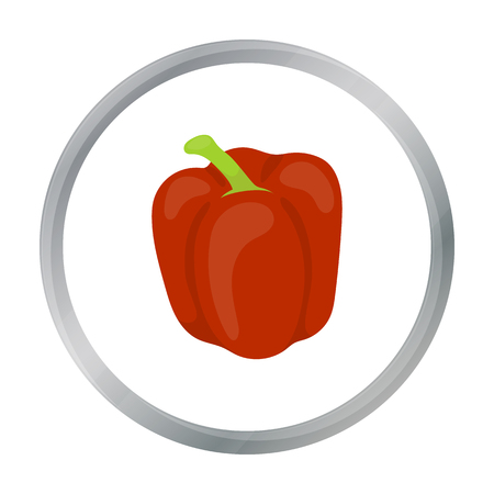 freshly: Pepper icon cartoon. Singe vegetables icon from the eco food cartoon.