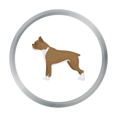 boxer dog: Boxer dog vector icon in cartoon style for web