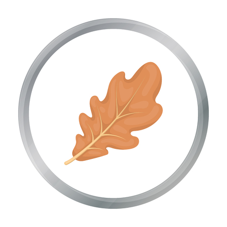 thanksgiving day symbol: Oak leaf icon in cartoon style isolated on white background. Canadian Thanksgiving Day symbol stock vector illustration.