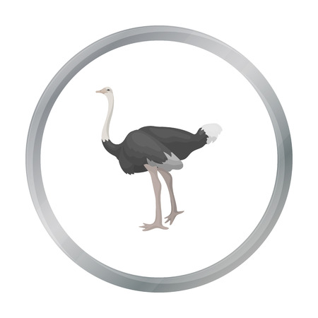 emu: Ostrich icon in cartoon style isolated on white background. Bird symbol stock vector illustration.