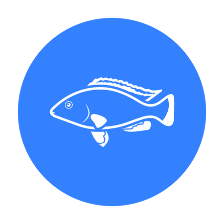 cichlid: Cichlid hummingbird fish icon black. Singe aquarium fish icon from the sea,ocean life black.