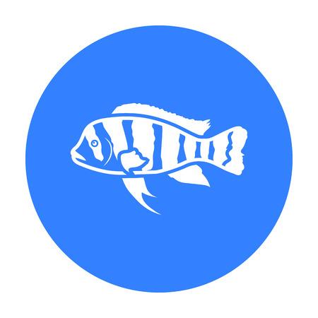 Frontosa Cichlid (Cyphotilapia Frontosa) fish icon black. Singe aquarium fish icon from the sea,ocean life black. Illustration