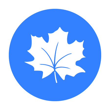 Maple Leaf vector icon in black style for web