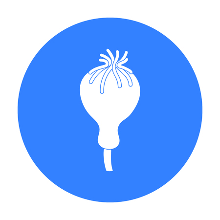opium poppy: Opium poppy icon in black style isolated on white background. Drugs symbol stock vector illustration.