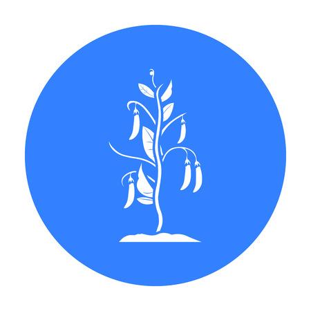 garden peas: Peas icon black. Single plant icon from the big farm, garden, agriculture black.