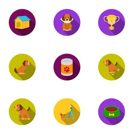 doghouse: Dog equipment set icons in flat style. Big collection dog equipment vector symbol stock illustration