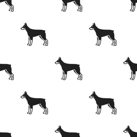 pincher: Doberman vector icon in black style for web
