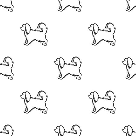 pekingese: Pekingese vector icon in black style for web Illustration