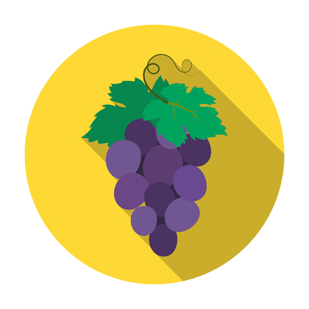 concord: Bunch of wine grapes icon in flat style isolated on white background. Spain country symbol stock vector illustration.