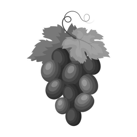 concord: Bunch of wine grapes icon in monochrome style isolated on white background. Spain country symbol stock vector illustration.