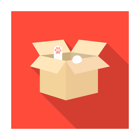 kitten small white: Cat in a carton box icon of vector illustration for web and mobile