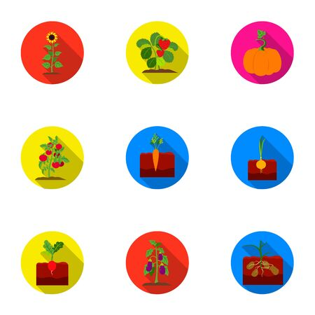 Plant set icons in flat style. Big collection of plant vector symbol stock illustration Illustration