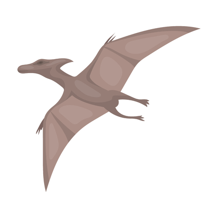 pterodactyl: Dinosaur Pterodactyloidea icon in cartoon style isolated on white background. Dinosaurs and prehistoric symbol stock vector illustration.