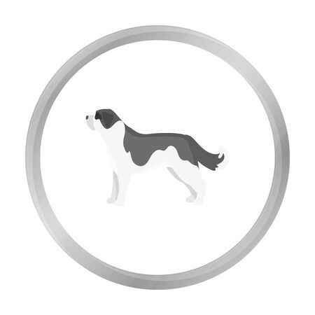 st  bernard: St. Bernard dog vector icon in monochrome style for web