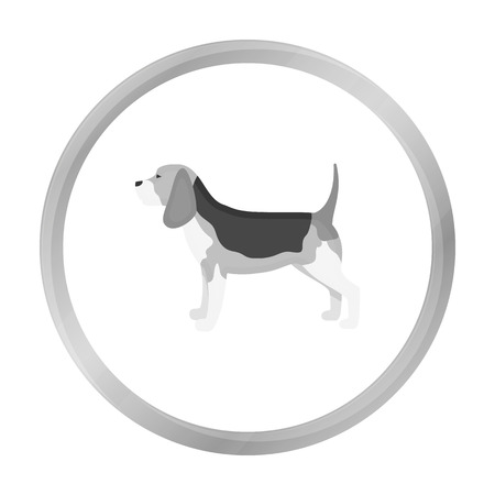 Beagle vector icon in monochrome style for web