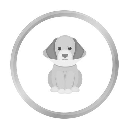 cold compress: Sick dog vector icon in monochrome style for web Illustration