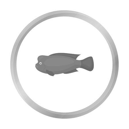 cichlid: Stearocranus fish icon monochrome. Singe aquarium fish icon from the sea,ocean life monochrome. Illustration