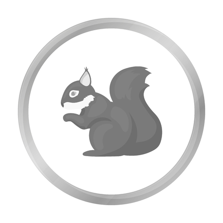 artful: Squirrel vector icon in monochrome style for web