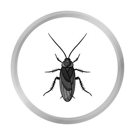 unhygienic: Cockroach icon in monochrome style isolated on white background. Insects symbol stock vector illustration.