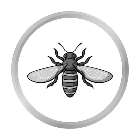 avispa: Bee icon in monochrome style isolated on white background. Insects symbol stock vector illustration. Vectores