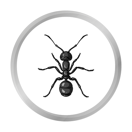 Ant icon in monochrome style isolated on white background. Insects symbol stock vector illustration.