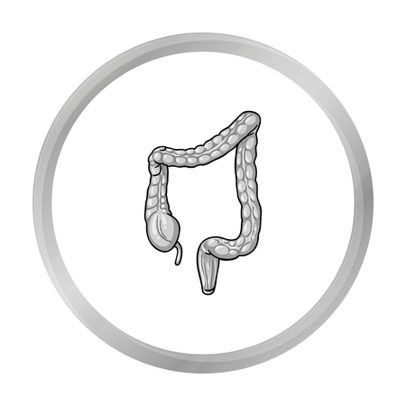 ileum: Human large intestine icon in monochrome style isolated on white background. Human organs symbol stock vector illustration.