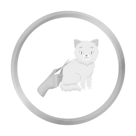 cat grooming: Grooming of a cat icon in monochrome style isolated on white background. Veterinary clinic symbol stock vector illustration.