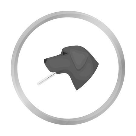 cold compress: Dog with thermometer icon in monochrome style isolated on white background. Veterinary clinic symbol stock vector illustration. Illustration
