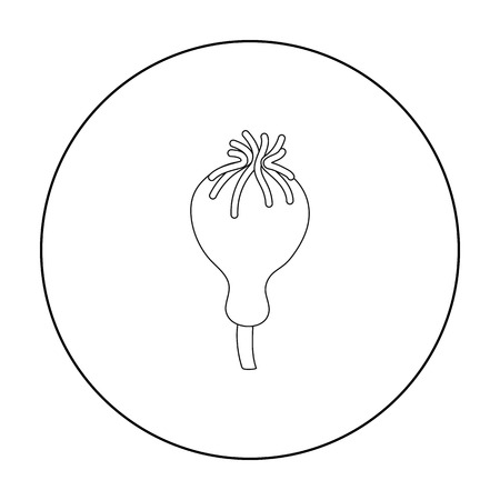 opium poppy: Opium poppy icon in outline style isolated on white background. Drugs symbol stock vector illustration. Illustration