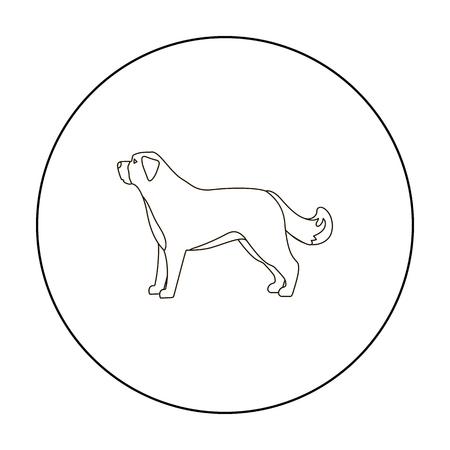 st  bernard: St. Bernard dog vector icon in outline style for web