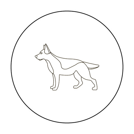 sheepdog: German shepherd vector icon in outline style for web