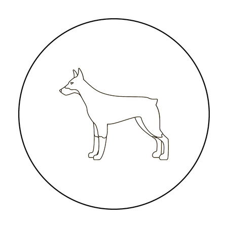 pincher: Doberman vector icon in outline style for web Illustration