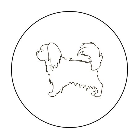 Pekingese vector icon in outline style for web Illustration