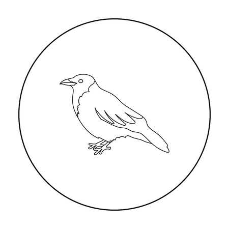 corvus: Crow icon in outline style isolated on white background. Bird symbol stock vector illustration.