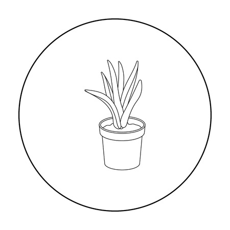 flowerpot: Office plant in th flowerpot icon in outline style isolated on white background. Office furniture and interior symbol stock vector illustration. Illustration