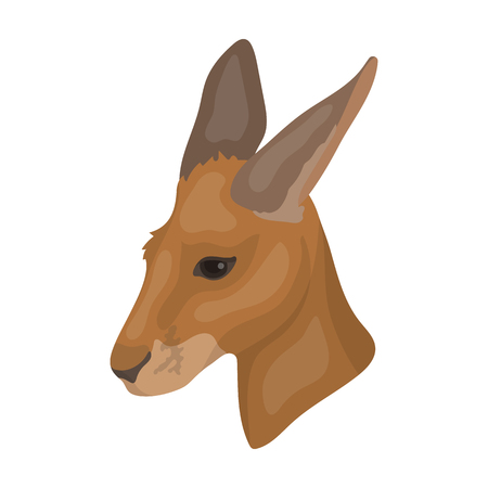 joey: Kangaroo icon in cartoon style isolated on white background. Realistic animals symbol stock vector illustration.