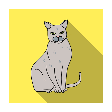 Chartreux icon in flat style isolated on white background. Cat breeds symbol stock vector illustration. Illustration
