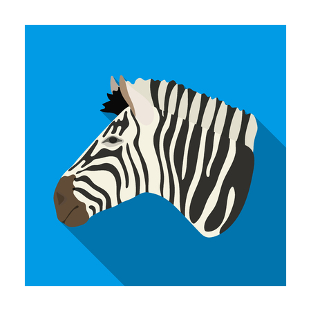 Zebra icon in flat design isolated on white background. Realistic animals symbol stock illustration.