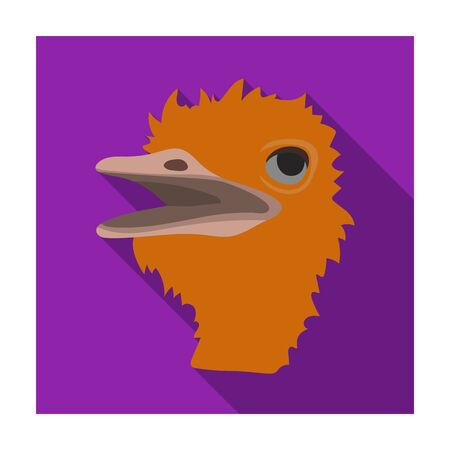 extremity: Ostrich icon in flat design isolated on white background. Realistic animals symbol stock illustration. Illustration