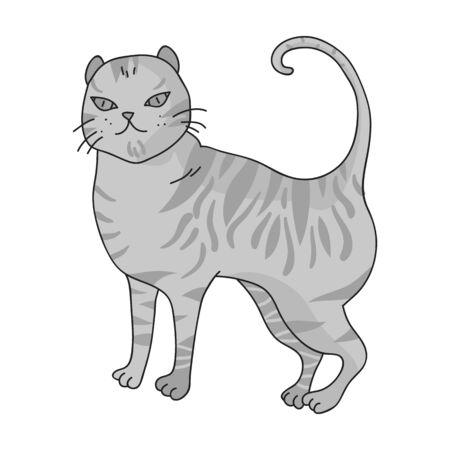 Brits Korthaar pictogram in zwart-wit ontwerp op een witte achtergrond. Kattenrassen symbool stock illustratie. Stock Illustratie