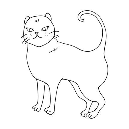 Brits Shorthair-pictogram in overzichtsontwerp dat op witte achtergrond wordt geïsoleerd. De kat kweekt de illustratie van de symboolvoorraad.