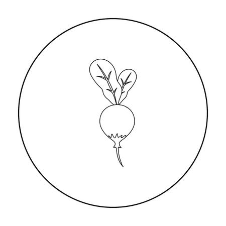 vegatables: Radish icon outline. Singe vegetables icon from the eco food outline. Illustration