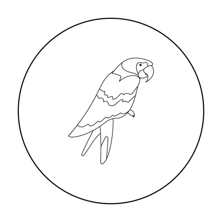 pampered: Pirates parrot icon in outline style isolated on white background. Pirates symbol vector illustration.