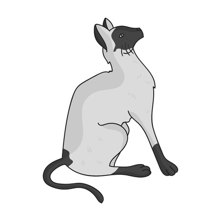 siamese: Siamese icon in monochrome style isolated on white background. Cat breeds symbol stock vector illustration. Illustration