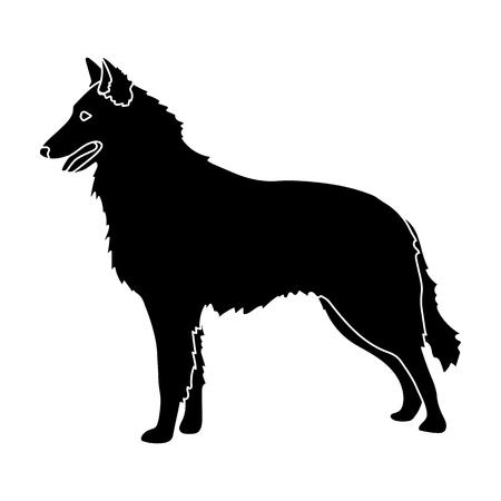 cute dog: The dark Belgian wolf. Belgium single icon in black style vector symbol stock illustration. Illustration
