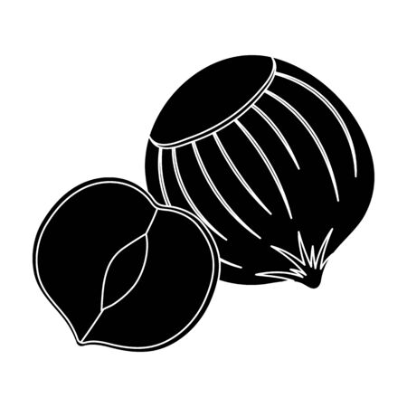 Hazelnuts in shell.Different kinds of nuts single icon in black style vector symbol stock illustration. Imagens - 75960668