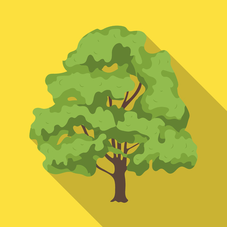 Canadian maple. Canada single icon in flat style vector symbol stock illustration web. Illustration