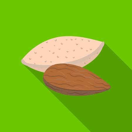 Almonds.Different kinds of nuts single icon in flat style vector symbol stock illustration. Ilustração